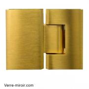 Charnière double laiton brossé pour porte de douche Verre-Verre 180°